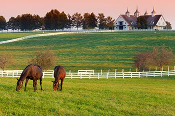 Howell-Real-Estate-Farm-Ranch